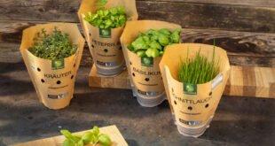 NORMA ersetzt Kunststoffverpackung der Bio-Kräuter