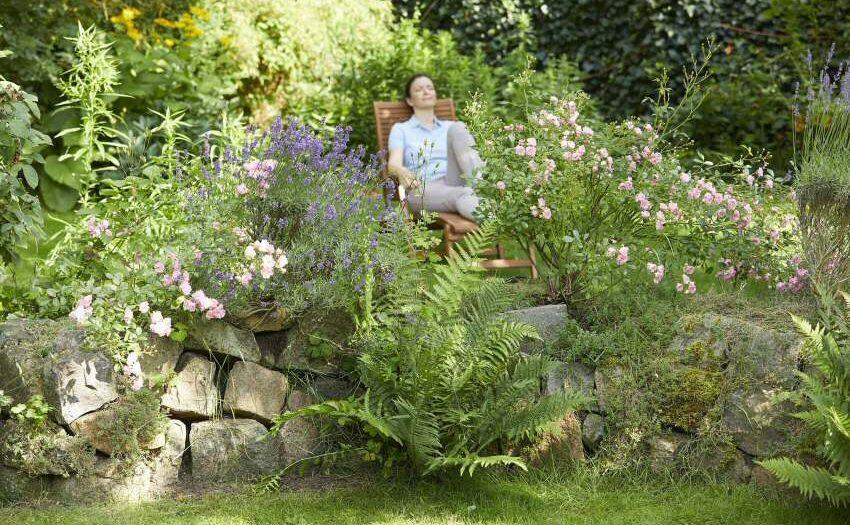 Hecken-Sträucher-Büsche - Sommerfrische im Garten